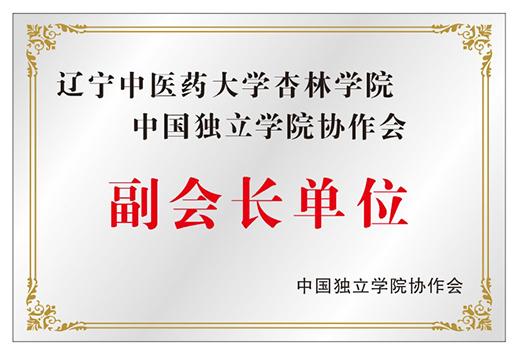 中国独立学院协作会副会长单位